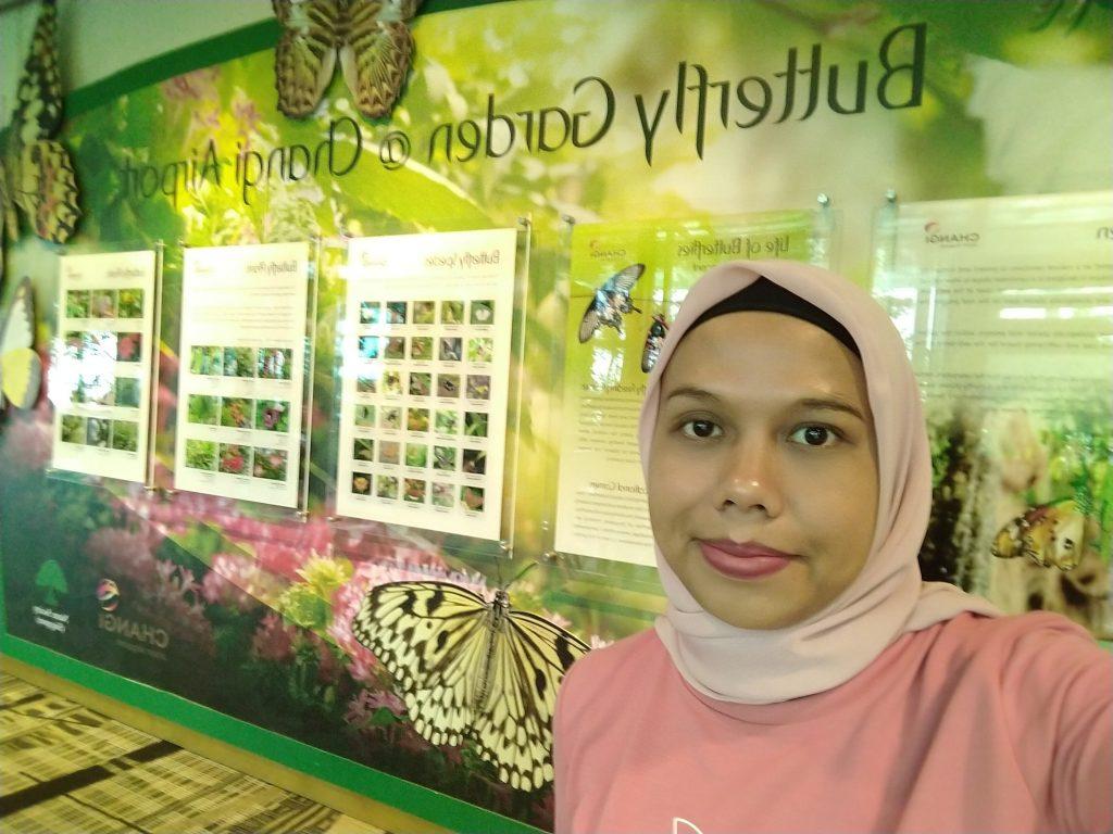 Transit yang bikin betah di Butterfly Garden Changi Airport