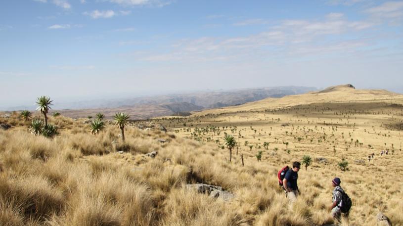 Cara Mengurus E-Visa Ethiopia untuk Kunjungan Turis