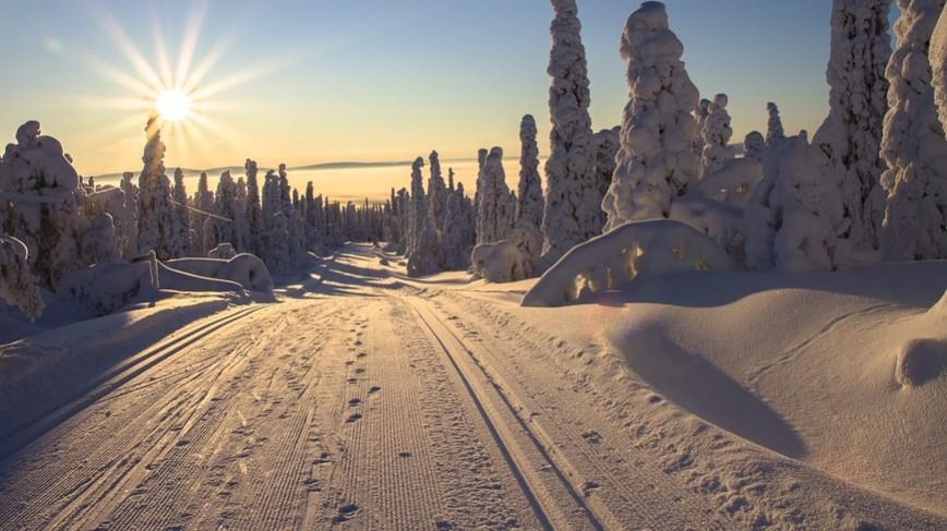 Kategori Visa Finlandia yang Bisa di Ajukan selama Pandemi